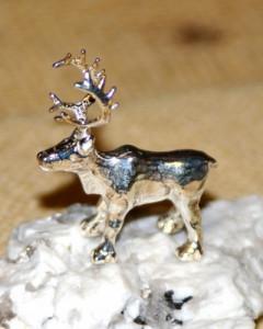 Silver reindder